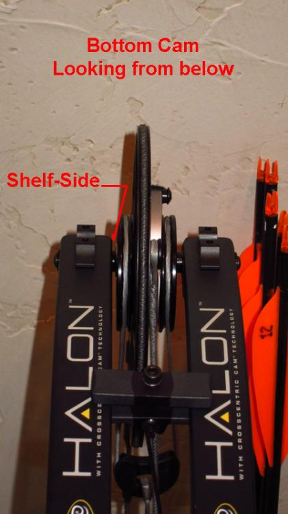 Halon 6 - Setup/Tune - General Archery Discussion - Hunting
